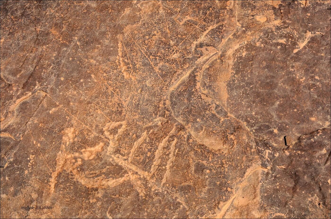 gravures pariétales datant de plus de 10 000 ans au sahara