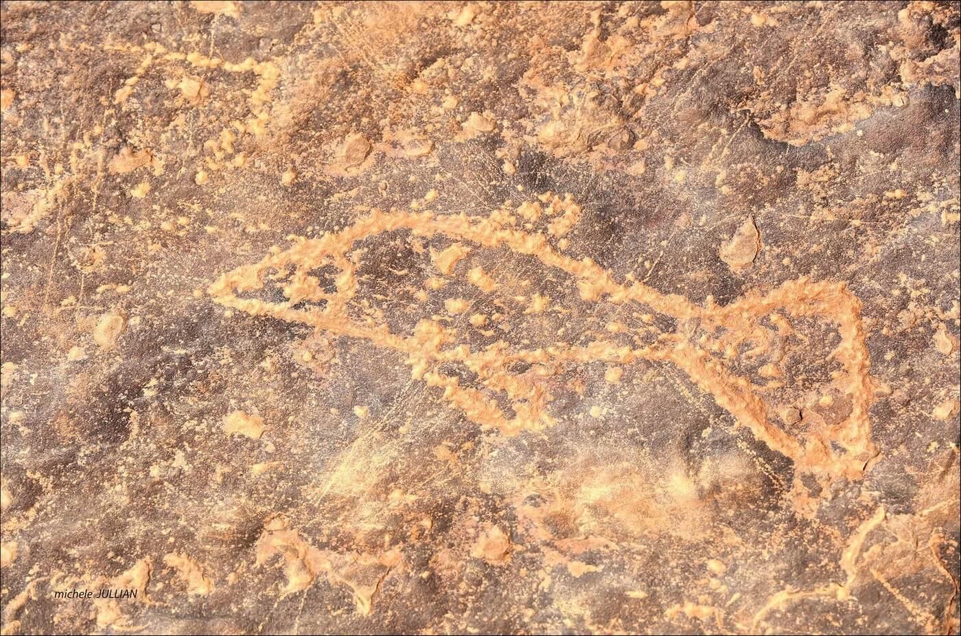 gravures pariétales dessin d'un poisson au sahara