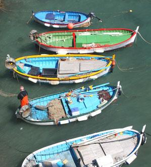 barques de pêcheurs à monterosso