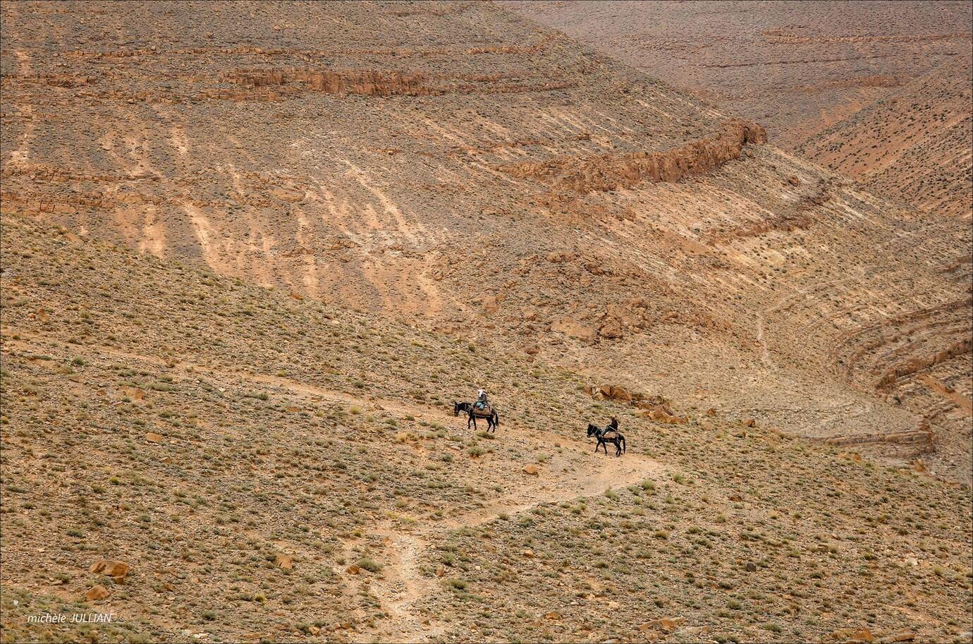 sur la route à cheval dans l'atlas marocain