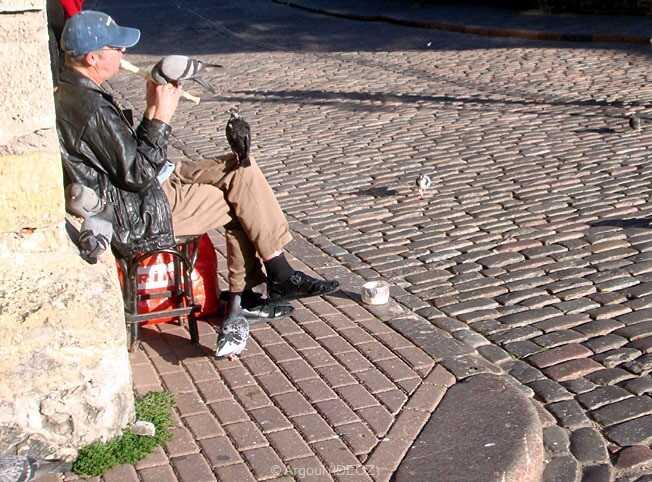 Riga homme jouant de la flute au milieu des pigeons au coin d'une rue