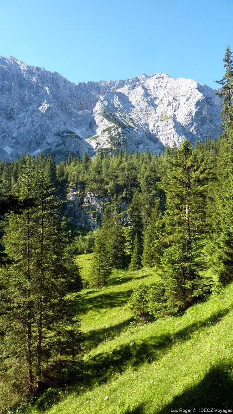 forets dans les alpes bavaroises près de Schachenhaus
