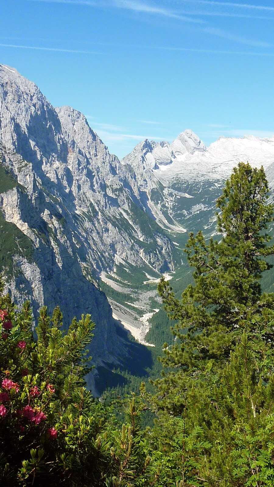forets dans les alpes bavaroises près du refuge de Schachenhaus