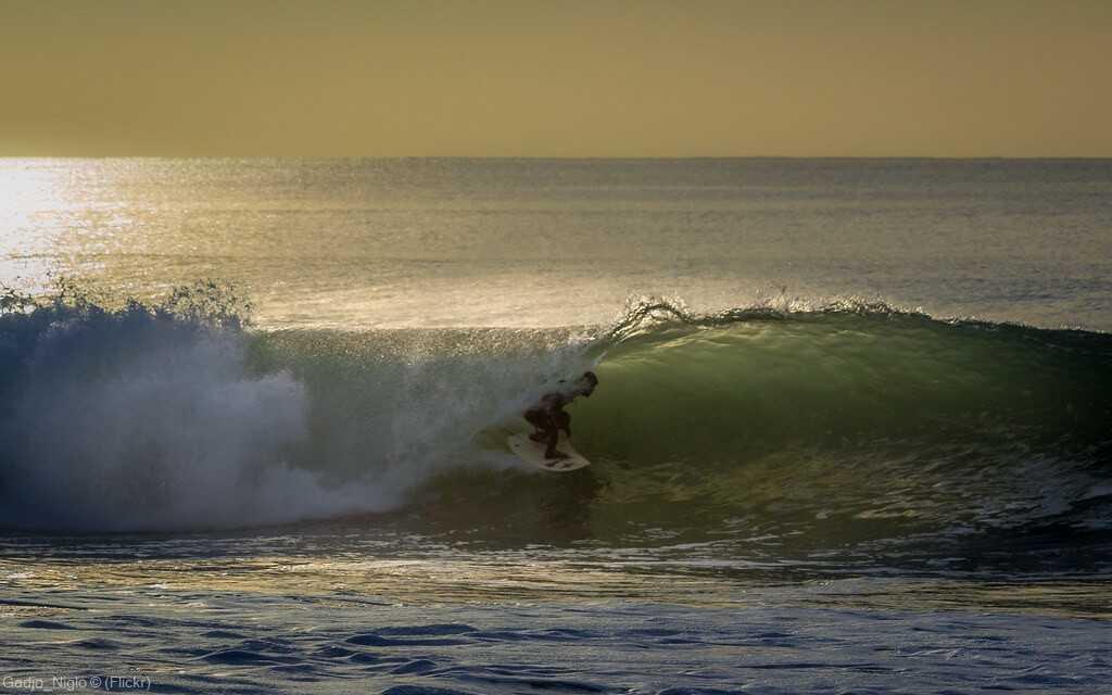 surf lors de vacances à seignosse dans les landes