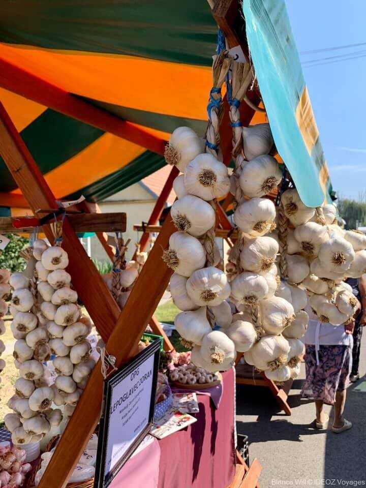 Ribarski Dani à Kopačevo : Festival des pêcheurs et de la Fis paprikas en Slavonie 4