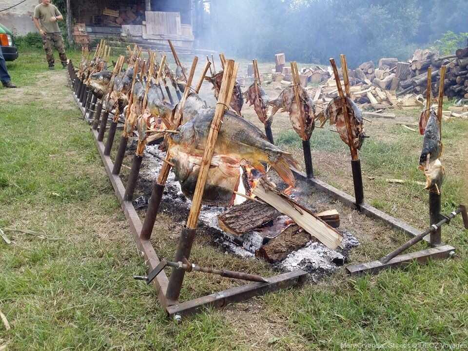 cuisson des poissons sur les broches pendant les journées des pêcheurs de kopacevo en slavonie