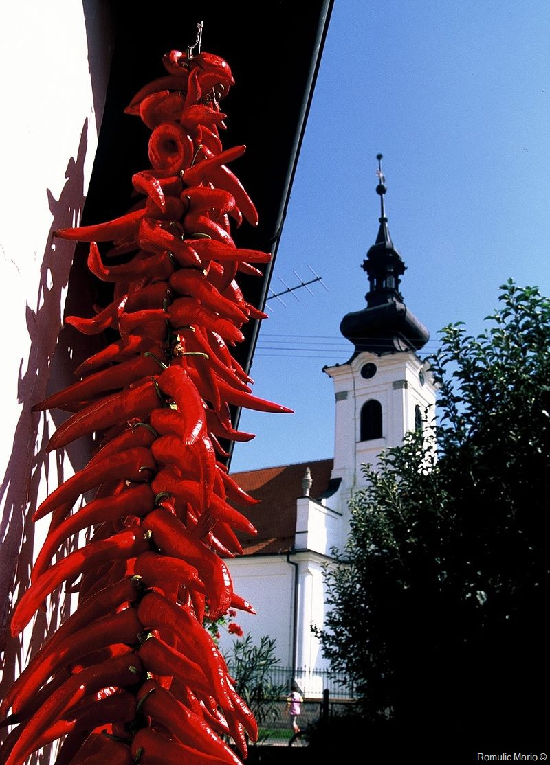Ribarski Dani à Kopačevo : Festival des pêcheurs et de la Fis paprikas en Slavonie 20