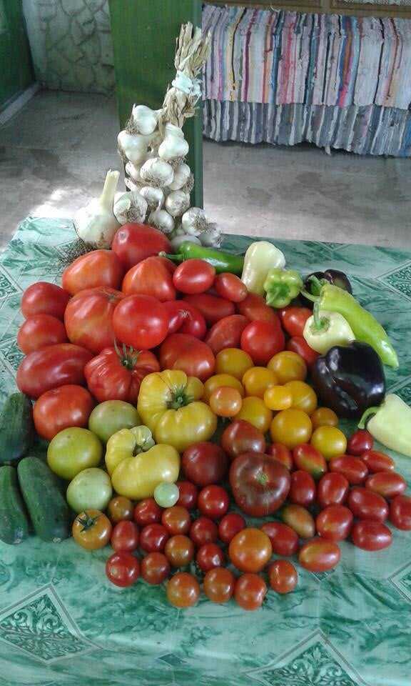ingrédients et légumes pour préparer le sataras