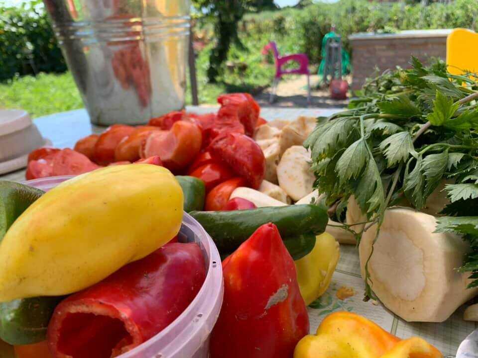 légumes d'été et d'automne pour la soupe de légumes slavonne