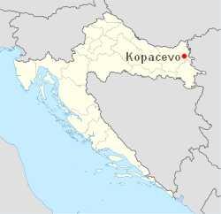 Ribarski Dani à Kopačevo : Festival des pêcheurs et de la Fis paprikas en Slavonie 1