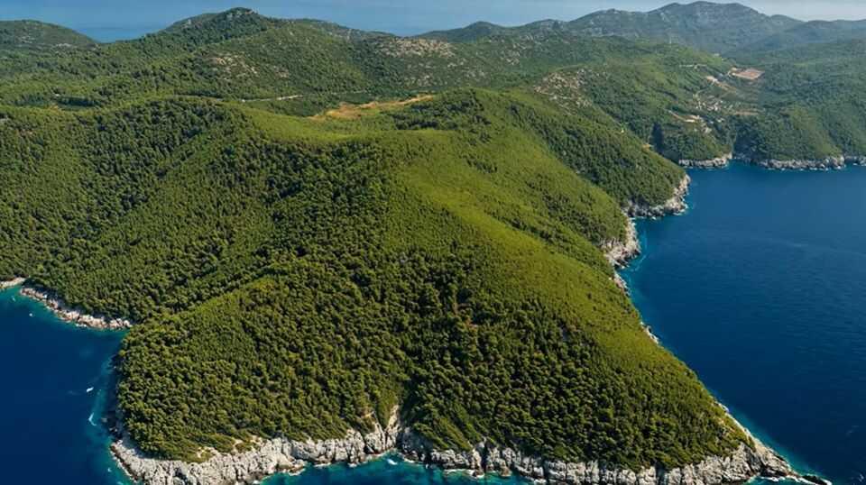 paysage de forêts de pins sur l'île de mljet en dalmatie