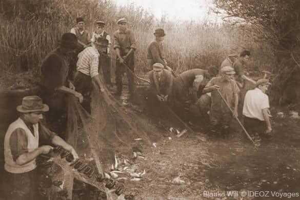 photo d'époque de la pêche dans la drave par les habitants de kopacevo