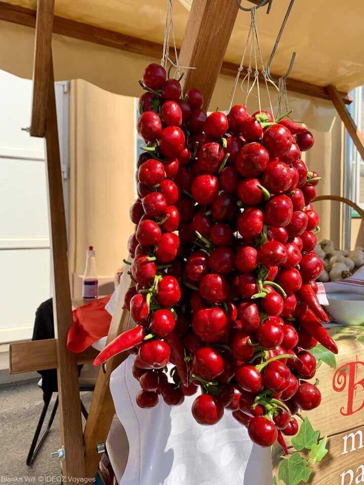 tomates et paprikas en slavonie