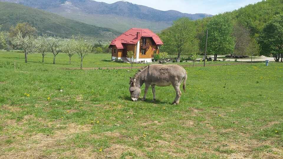 Où dormir à Plitvice ? Bonnes adresses de chambres d'hôtes, hôtels et campings 16