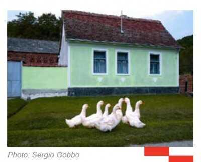 bistriki agrotourisme à osekovo dans la région de moslavina
