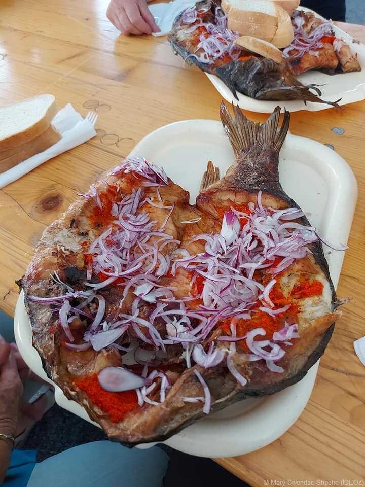 fete des poissons a kopacevo carpes sur les piques