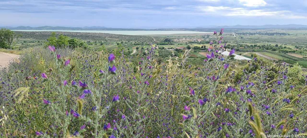 paysages du parc naturel de vrana