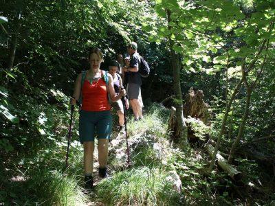 marcher avec des batons de randonnée dans le parc Paklenica